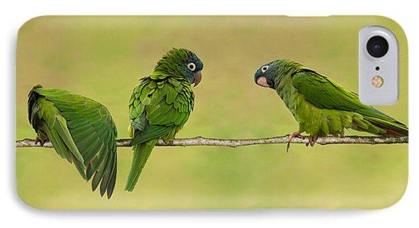 Parakeet Trio IPhone Case