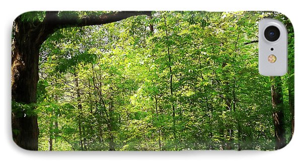 Paris Mountain State Park South Carolina IPhone Case