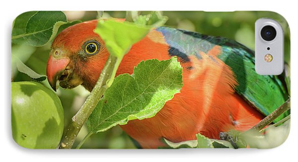 IPhone Case featuring the photograph  Parrot In Apple Tree by Werner Padarin