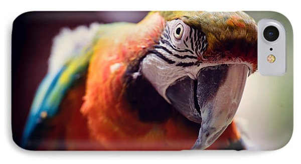 Parrot Selfie IPhone Case by Fbmovercrafts