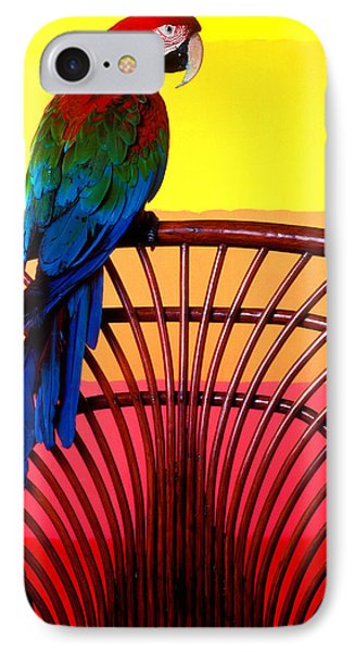 Parrot Sitting On Chair Phone Case by Garry Gay