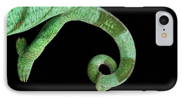 Parson Chameleon, Calumma Parsoni On Black Background, Top View IPhone 7 Case by Sergey Taran