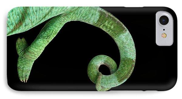 Parson Chameleon, Calumma Parsoni On Black Background, Top View IPhone Case by Sergey Taran