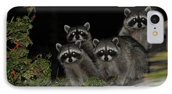 IPhone Case featuring the photograph Party Of Five On The Roof Top by Nina Prommer