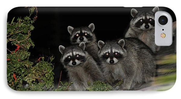 Party Of Five On The Roof Top IPhone Case by Nina Prommer