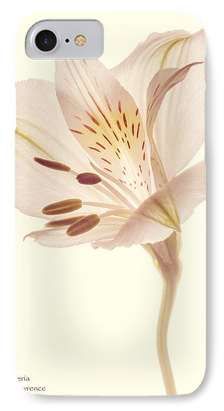 IPhone Case featuring the photograph Pasae Alstroemeria By Flower Photographer David Perry Lawrence by David Perry Lawrence