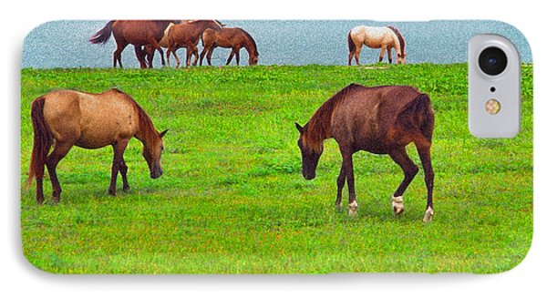 Paso Fino Horses Graze By Seaside IPhone Case by Thomas R Fletcher