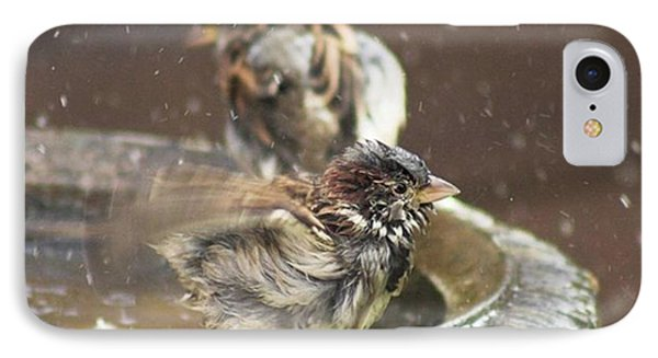 Pass The Towel Please: A House Sparrow IPhone Case