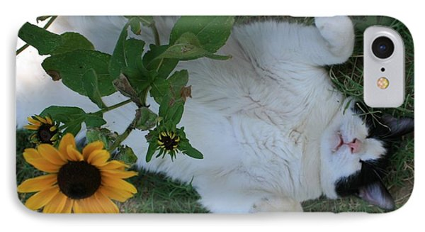 Passed Out Under The Daisies IPhone Case by Marna Edwards Flavell