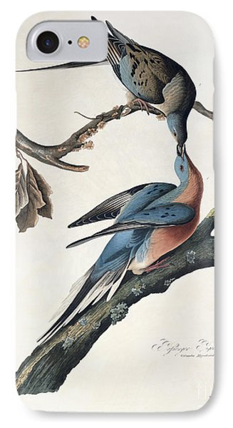 Passenger Pigeon IPhone 7 Case