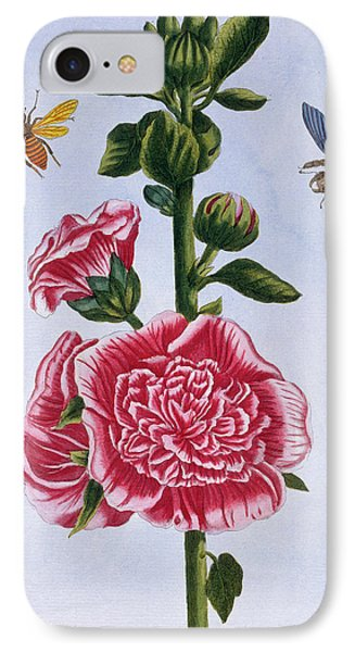 Passerose Hollyhock IPhone Case