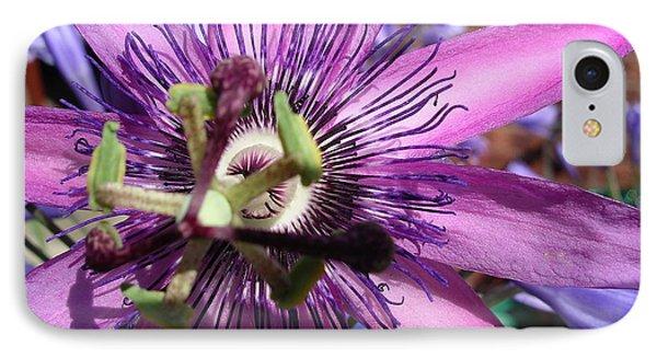 IPhone Case featuring the photograph Passion Flower by Jolanta Anna Karolska