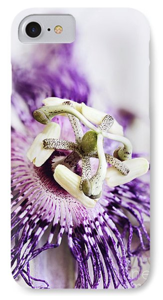 IPhone Case featuring the photograph Passion Flower by Stephanie Frey