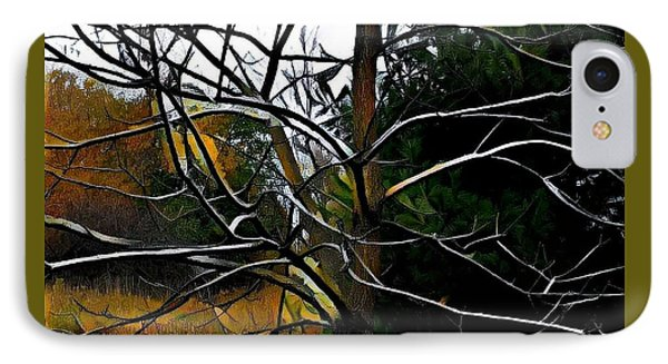 Past The Branches IPhone Case by Diane Miller