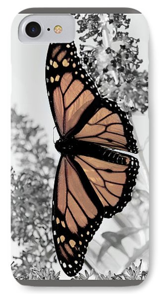 IPhone Case featuring the photograph Pastel Monarch On Black And White by Lara Ellis