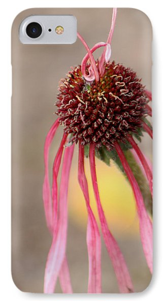IPhone Case featuring the photograph Pastel Perfection by Deborah  Crew-Johnson