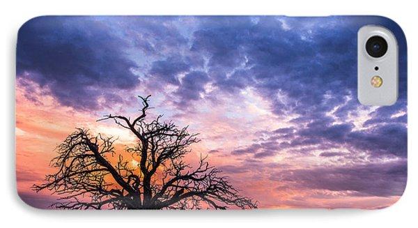 Pastel Sunset IPhone Case by Elena E Giorgi