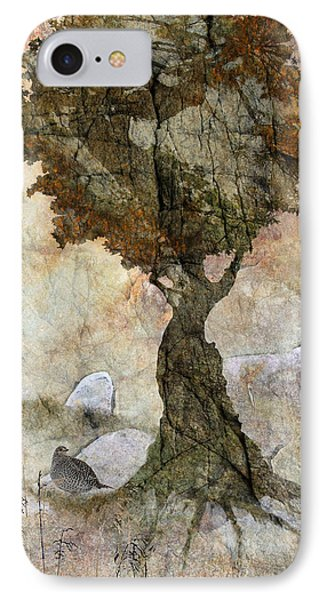 Pastoria - Year Of The Dragon IPhone Case by Ed Hall
