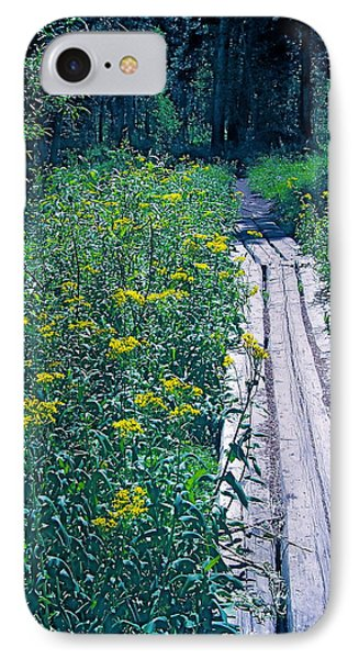 Path 4 IPhone Case by Pamela Cooper