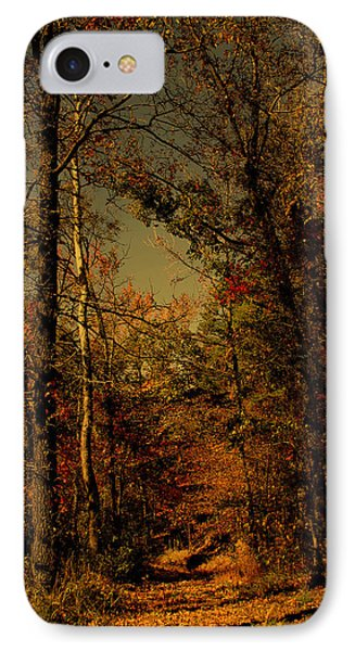 Path Into The Woods Phone Case by Nina Fosdick