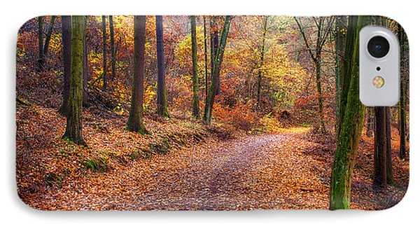 Path Through The Colorful  Autumn IPhone Case by Jenny Rainbow