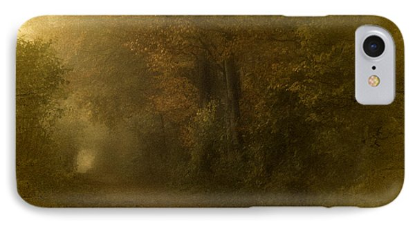 Path To Autumn IPhone Case by Richard Cummings