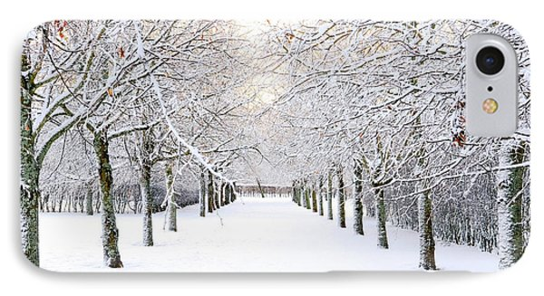 Pathway In Snow IPhone Case