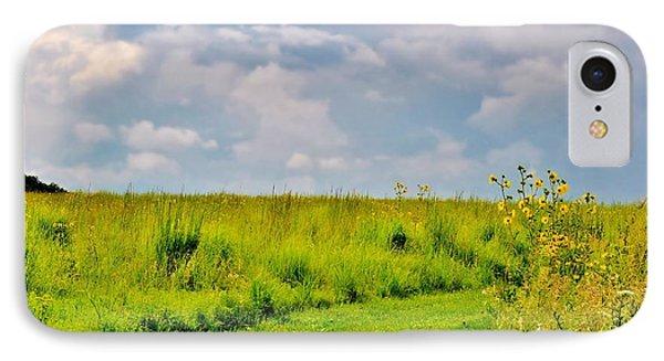 Pathway Through Wildflowers IPhone Case