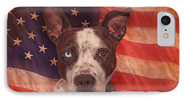 Patriotic Pit Bull  IPhone Case by Brian Cross
