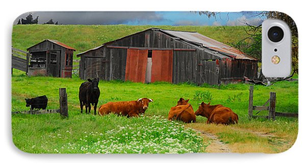 Peaceful Cows IPhone Case by Harry Spitz