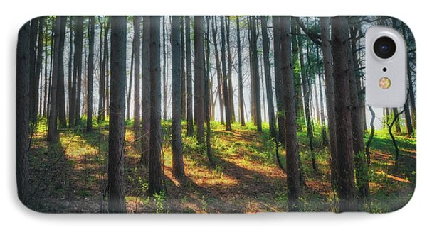 Peaceful Forest - Spring At Retzer Nature Center IPhone Case by Jennifer Rondinelli Reilly - Fine Art Photography