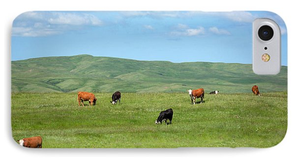 Peaceful Pasture IPhone Case by Todd Klassy