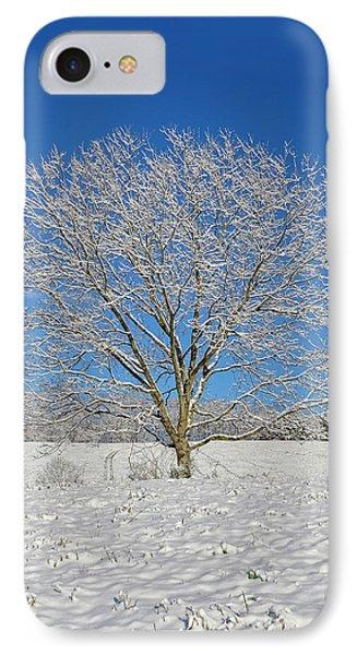 Peaceful Winter IPhone Case by Susan Leggett