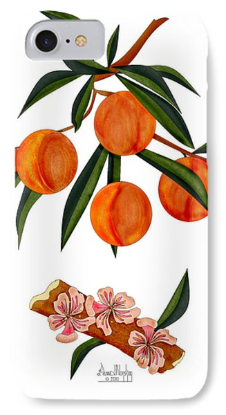 Peach And Peach Blossoms Phone Case by Anne Norskog