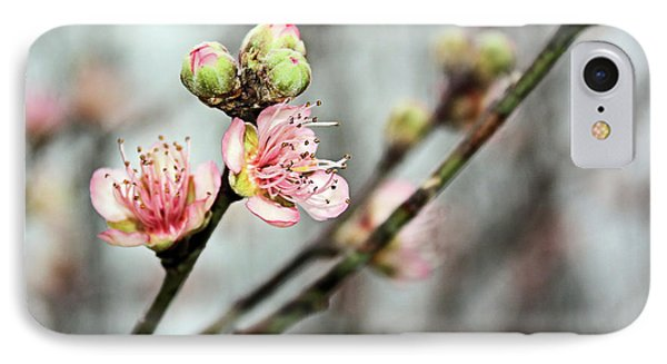 IPhone Case featuring the photograph Peach Blossom by Kristin Elmquist
