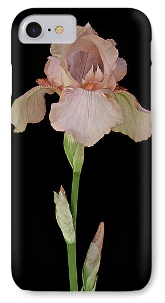Peach Iris Phone Case by Michael Peychich