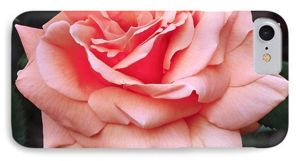 Peach Rose IPhone Case by Rona Black