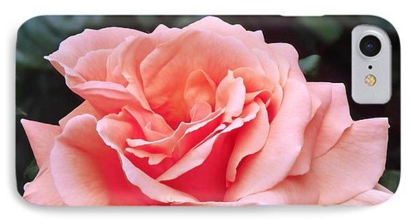 Peach Rose IPhone 7 Case