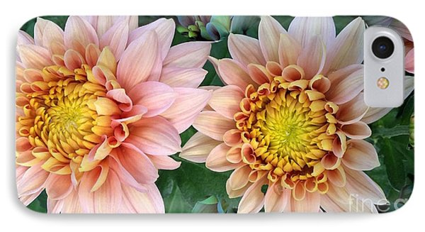 Peachy Chrysanthemums IPhone Case