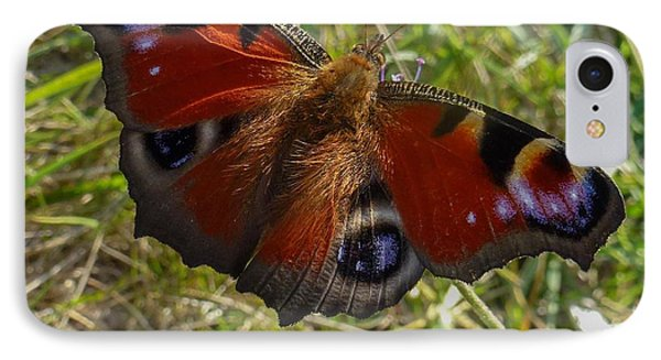 IPhone Case featuring the photograph Peacock Butterfly by Jean Bernard Roussilhe