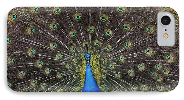 IPhone Case featuring the photograph Peacock Displaying Feathers by Bradford Martin