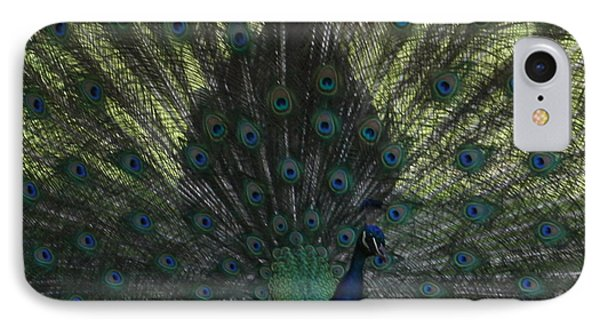 Peacock Eyes Phone Case by Michelle Miron-Rebbe