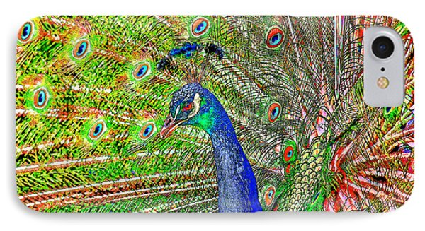 Peacock Fanned Tail Feathers IPhone Case by Tracie Kaska