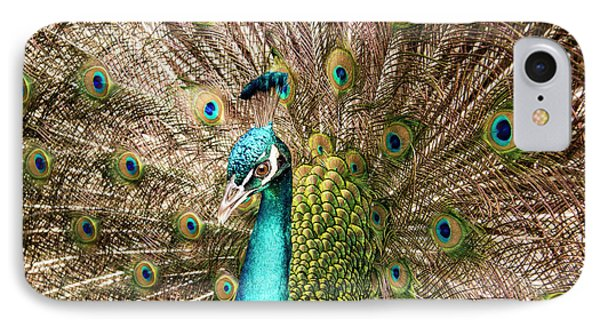 Peacock Portrait IPhone Case by Jean Noren