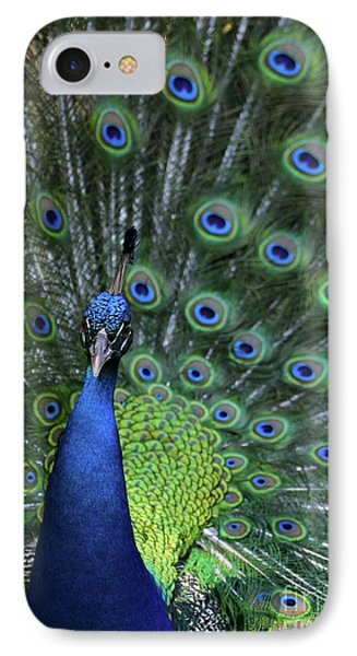 Peacock Phone Case by Sabrina L Ryan