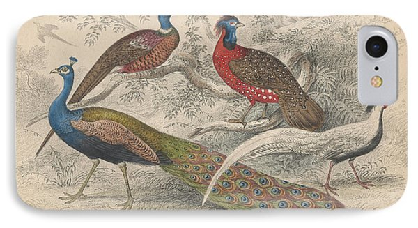 Peacocks IPhone Case by Dreyer Wildlife Print Collections