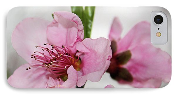 IPhone Case featuring the photograph Plum Blossom by Kristin Elmquist