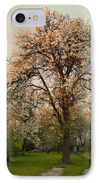 Pear Spring Sunrise IPhone Case by Henryk Gorecki