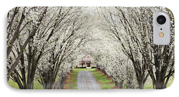 IPhone Case featuring the photograph Pear Tree Lane by Benanne Stiens