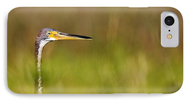 IPhone Case featuring the photograph Peek-a-boo Birdie by Bob Decker